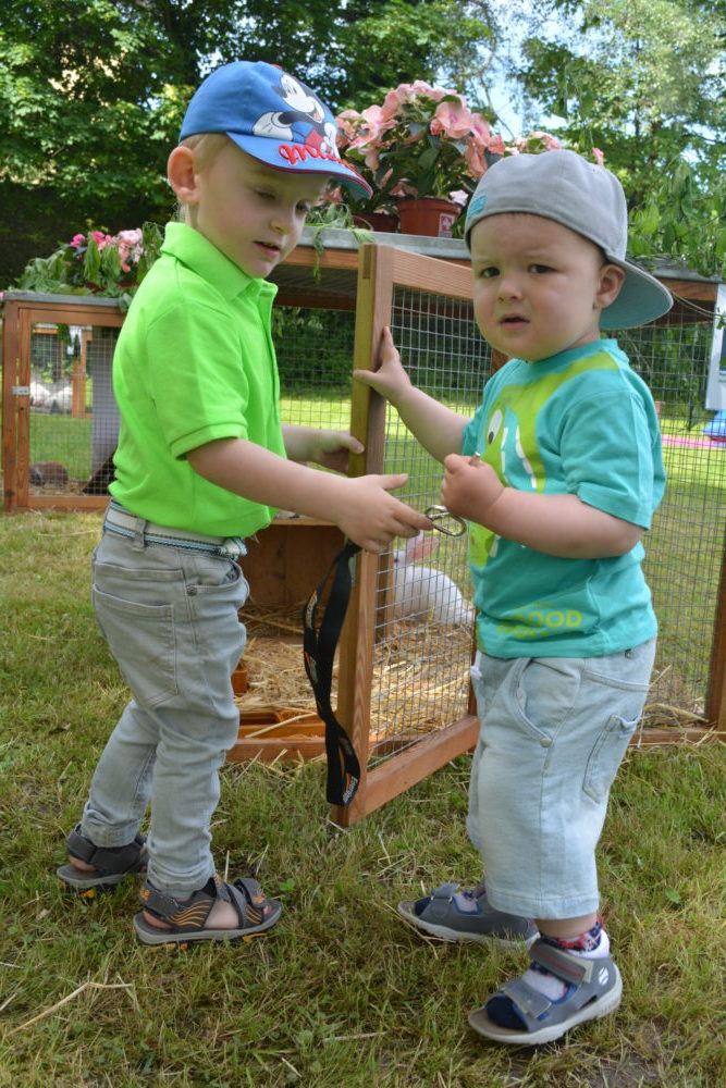 Kinder können bereits eine Beziehung zu Kleintieren wie Geflügel und Kaninchen aktiv aufbauen