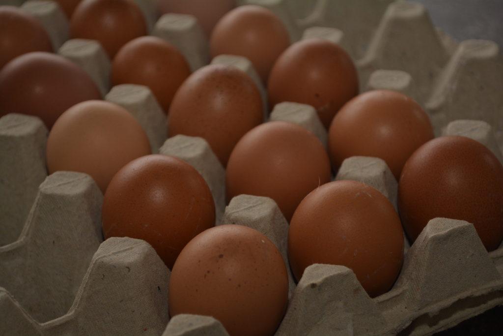 Das Ei ist ein Kunstwerk der Natur